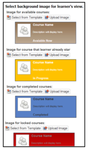 4C05_learner view builder